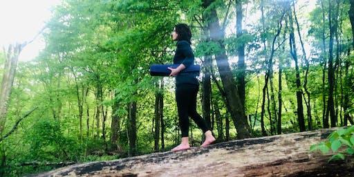 Walk n' Wellness Exploration