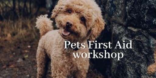 Canine & Feline First Aid workshop
