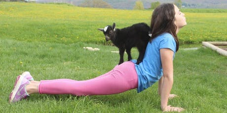 Goat Yoga at Woofstock 2019 11:30am tickets