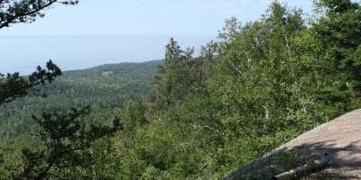 Carlton Peak Hike
