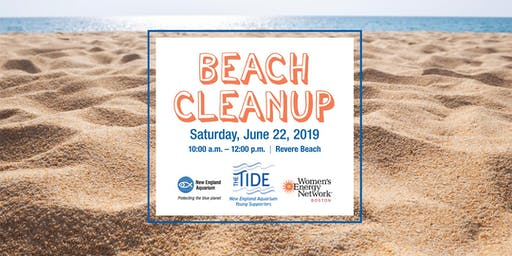 The Tide & Women's Energy Network Beach Cleanup