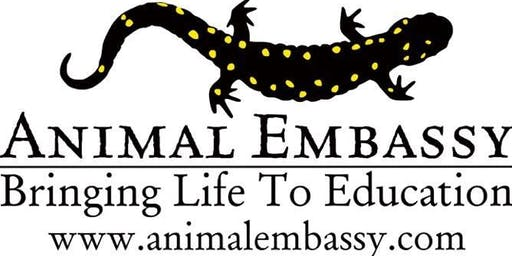 Over the Moon Animal Adventure with Animal Embassy
