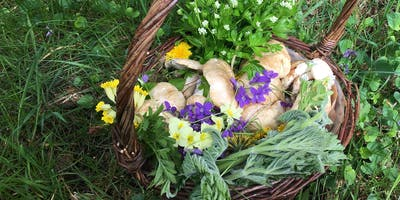 May Foraging Course