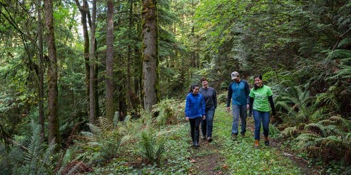 Get Outside: North Cougar Mountain