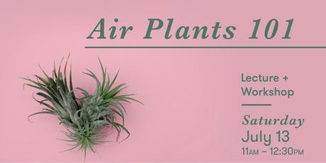 Air Plants 101: Lecture + Workshop tickets