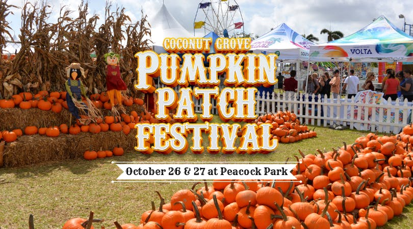 Coconut Grove Pumpkin Patch Festival