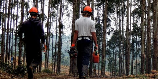 EFAW +Forestry Training - Level 3 Qfqual Accredited