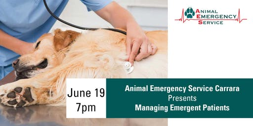 Vet Seminar - Managing Emergent Patients, Carrara June 19