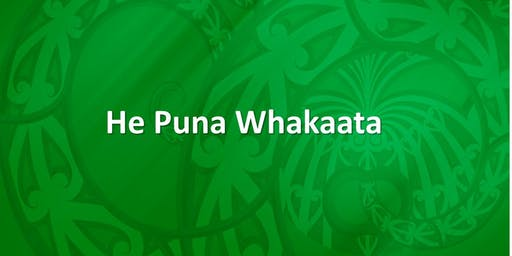 He Puna Whakaata Therapeutic Programme - 29 July 2019