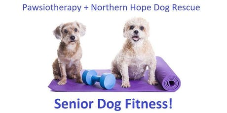 Pawsiotherapy and Northern Hope Dog Rescue: Senior Dog Fitness Class! tickets