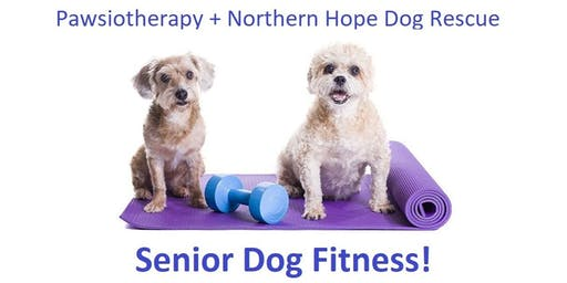 Pawsiotherapy and Northern Hope Dog Rescue: Senior Dog Fitness Class!