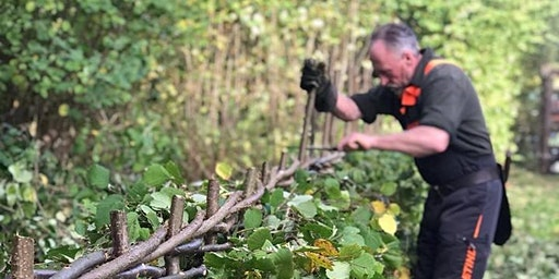 Hedgelaying & Coppicing Training Courses - 2019/20