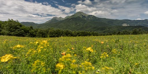 Wiki Loves Earth #InEmiliaRomagna - Parco Appennino Tosco Emiliano
