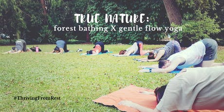 True Nature: Forest Bathing x Gentle Flow Yoga tickets