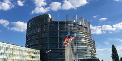 The European elections: Implications for Brexit and British Politics