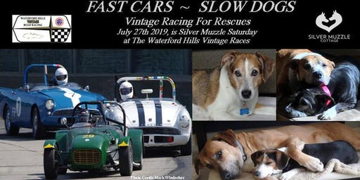 Silver Muzzle Saturday at the 2019 Waterford Hills Vintage Races