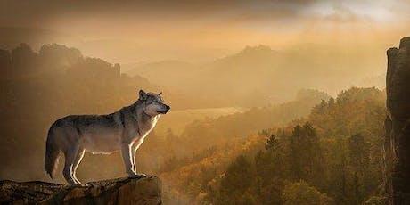 Training Persoonlijk Leiderschap: Laat de wolf in je vrij!  tickets