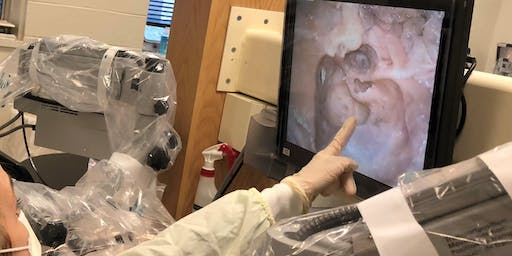 University of Michigan Temporal Bone Dissection Course May 11-15, 2020