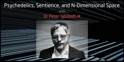 Psychedelics, Sentience, and N-Dimensional Space