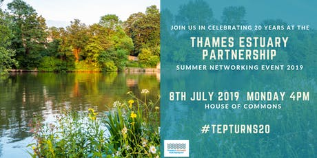 TEP turns 20! Summer Networking Event 2019 tickets