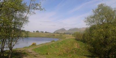 Netwalking Scotland (West) - Dumbrock Muir and Mugdock