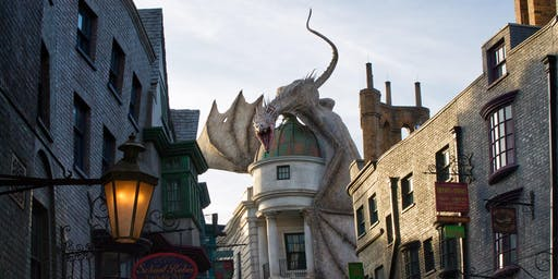 Harry Potter's Birthday Party!