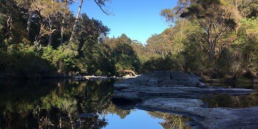 Bibbulmun Track Walpole 4 day Adult Trek Western Australia