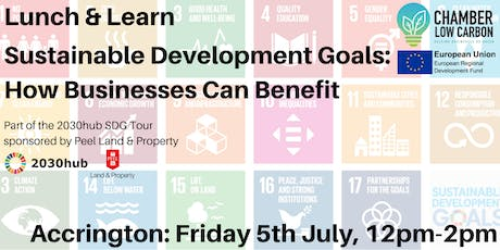 Lunch & Learn - Sustainable Development Goals: How Businesses Can Benefit tickets