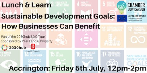 Lunch & Learn - Sustainable Development Goals: How Businesses Can Benefit