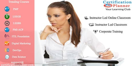 Project Management Professional (PMP) 4-days Classroom in Rochester City ingressos