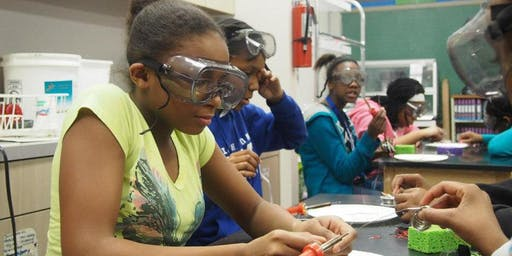 Girls Inc. of Long Island: Summer STEAM High School Program