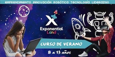 Tinkers Exponential Summer CDMX  (Curso de Verano)
