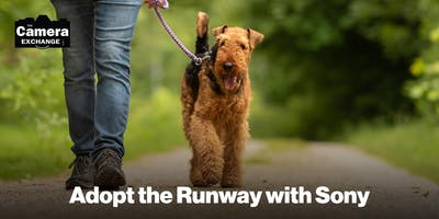 Adopt the Runway with Sony