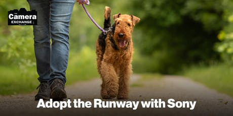 Adopt the Runway with Sony tickets