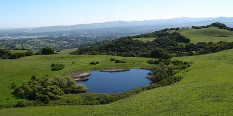 Briones Crest Trail Hike - August 24, 2019 tickets
