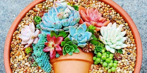 Succulent Flatlay Workshop at Groundswell (Santee)