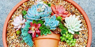 Succulent Flatlay Workshop at La Fleur's Winery