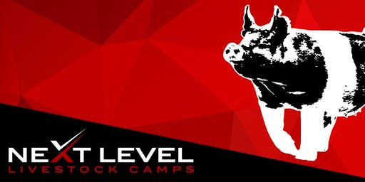 NEXT LEVEL SHOW PIG CAMP | July 27th/28th, 2019 | Brenham, Texas