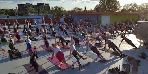 Weekly Yoga Asana + Meditation with Ashlyn Elizabeth