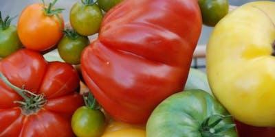Vegetable Gardening Diagnostic Workshop