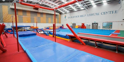 Try gymnastics at the YMCA Endeavour Hills
