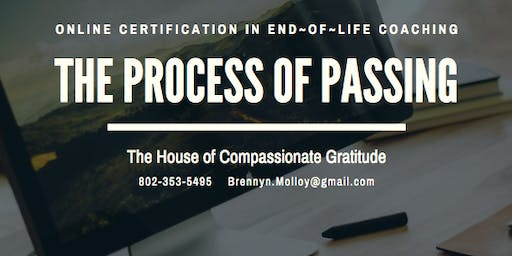 Online Life Bridge Aid Certification and The Process of Passing