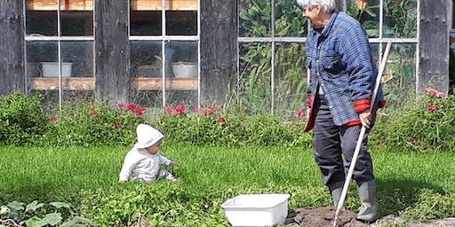 Créez votre premier jardin / Create your first garden
