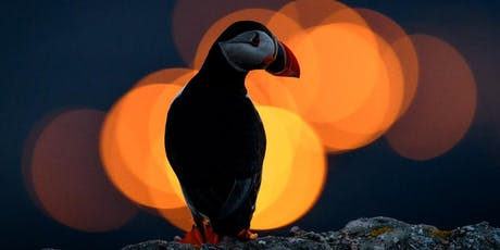 Wildlife Photography at Home with Richard Peters tickets