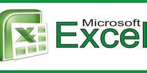 Using Microsoft Excel (Intro/Intermediate)