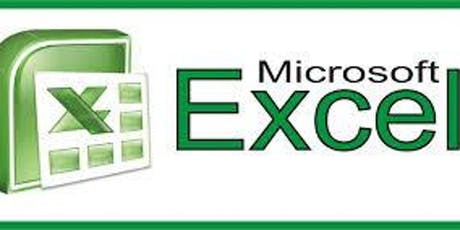 Using Microsoft Excel (Intro/Intermediate) tickets