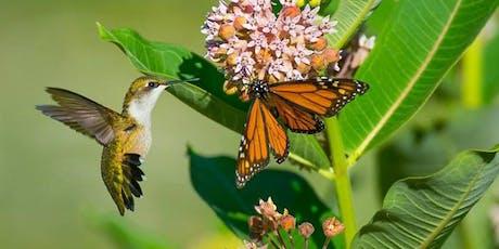 Pollinators Family Program tickets
