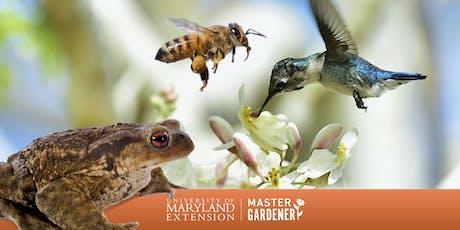 Master Gardener: Children's Gardening Summer Series 2019 tickets