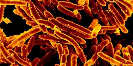 GCRF International Capacity Building Workshop to Tackle AMR in TB tickets
