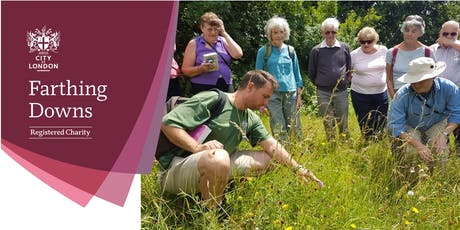 Flower Walk - Farthing Downs tickets